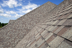 Homes roofed with asphalt shingles in Palm Harbor